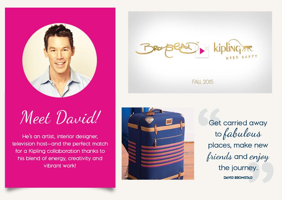 David Bromstad, artist, interior designer, television host