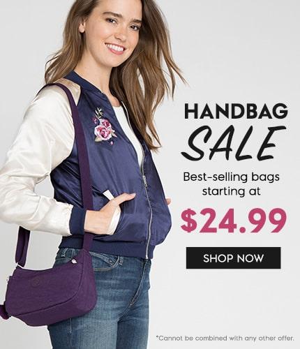 $24.99 Handbag