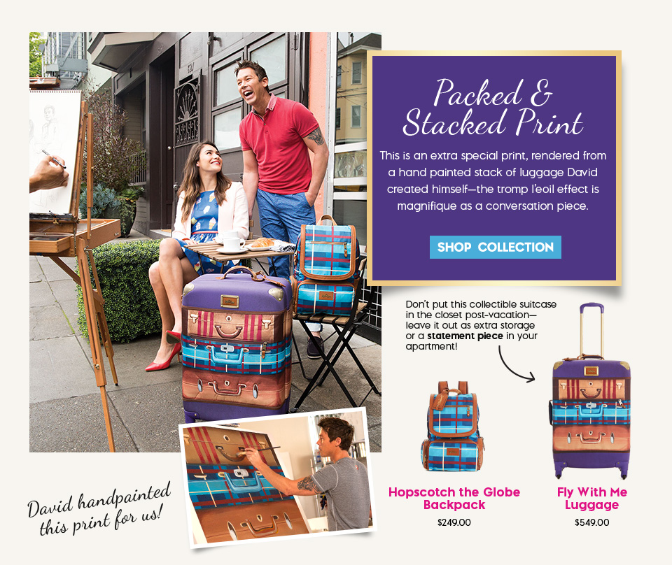 David Bromstad Packed & Stacked Print Bags & Luggage Collection