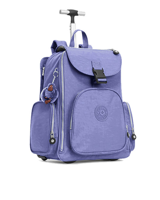 Rolling backpacks category