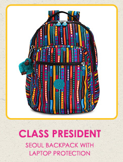 Class President.  Seoul backpack with laptop protection.