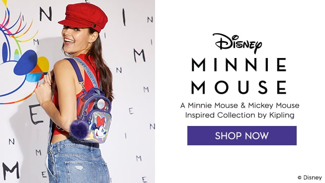 Disney Mini Mouse
