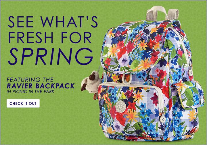 Picnic Park Bags